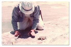 Texas Crab Master