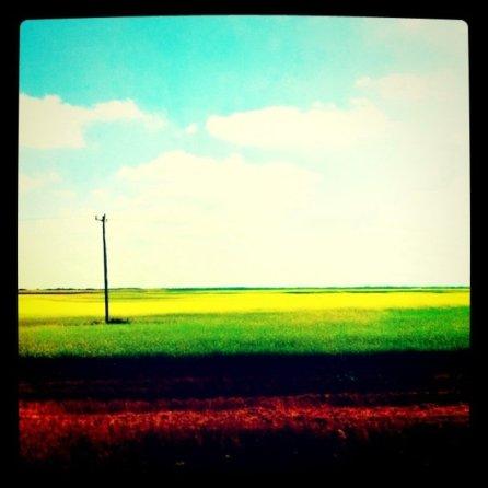 Back in the prairies