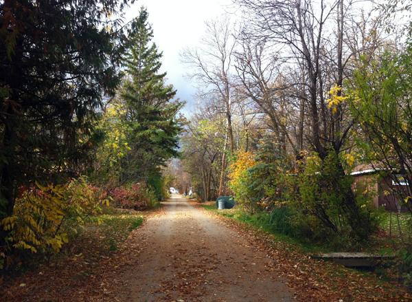 The colourful backlanes of cottage country