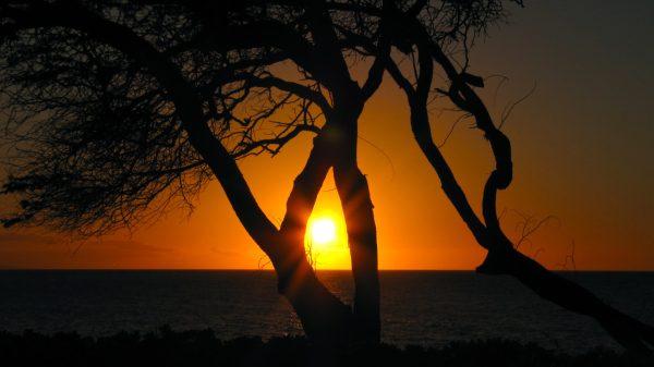 One last sunset