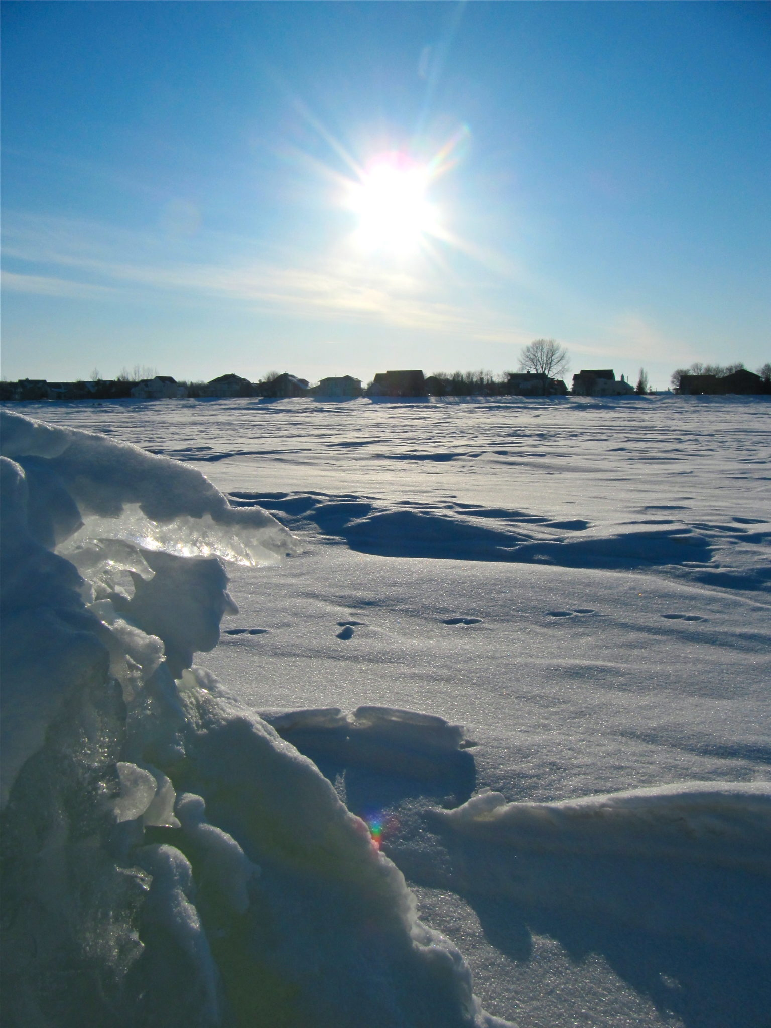 Lake Winnipeg in February - Between Brush Strokes
