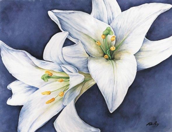 White Lillies, watercolour, 2003