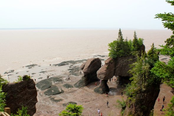 The Flowerpot Rocks. Sculpted by the highest tides in the world.