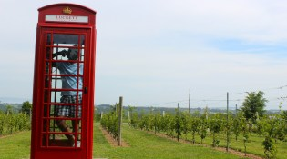 Luckett Vineyards, Annapolis Valley, Nova Scotia, Canada.