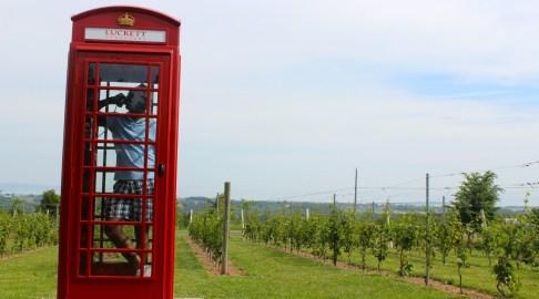 Luckett Vineyards, Annapolis Valley, Nova Scotia, Canada.
