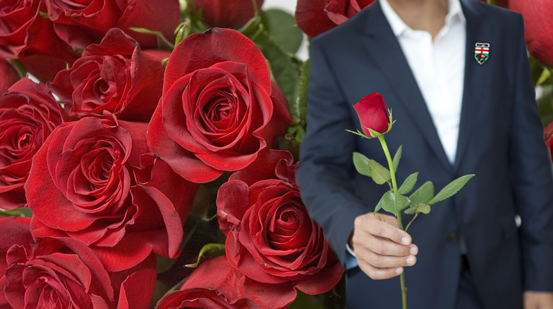 Will you accept this rose? A bachelorette's guide to a Manitoba fairy tale romance