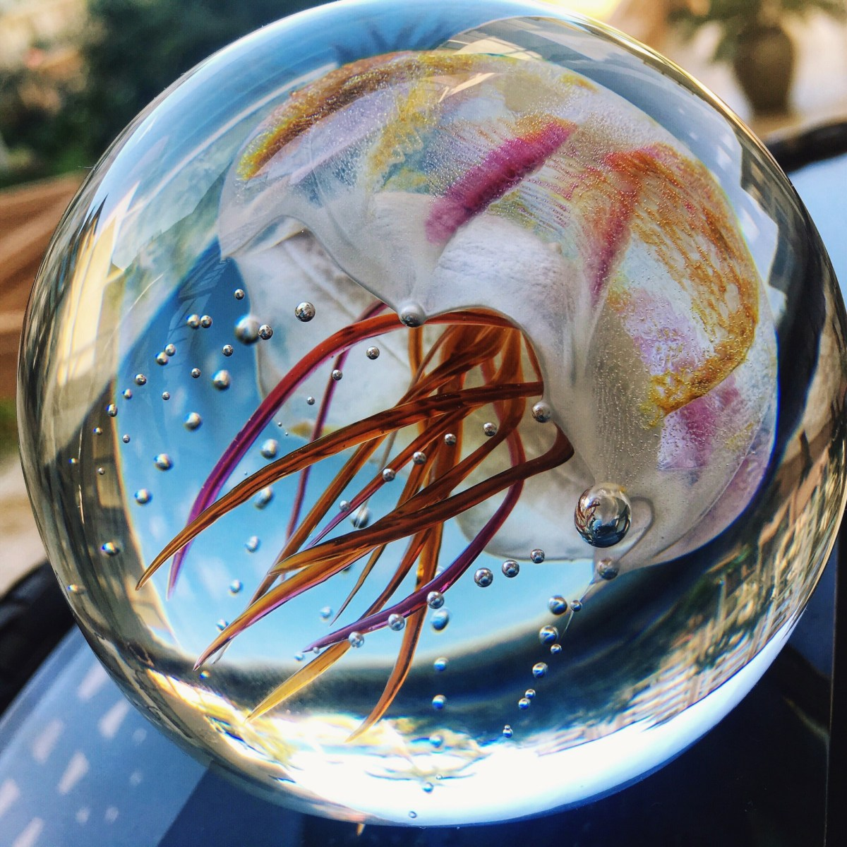 Jellyfish from Hot Island Glass