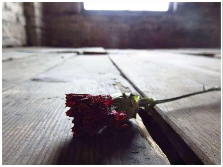 Auschwitz 48 hours in Krakow Poland