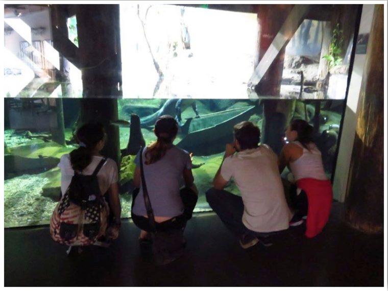 Dubuque Iowa Aquarium