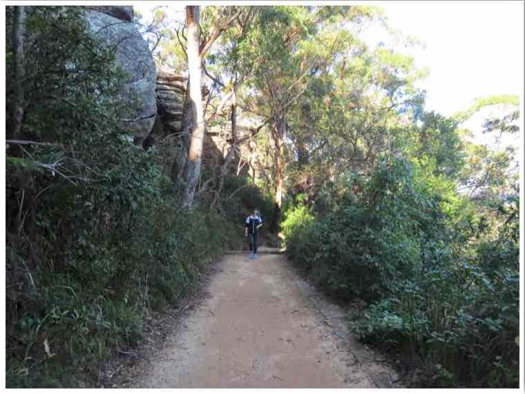 Barrenjoey Lighthouse Walk Access Trail Palm Beach Australia