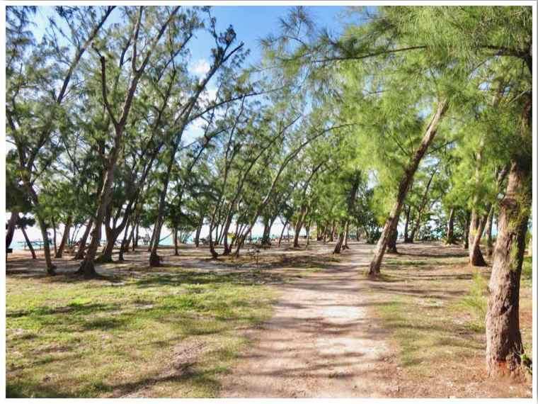 key west beach fort zachary