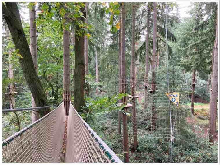 Go Ape Tarzan Swing Thetford Forest UK