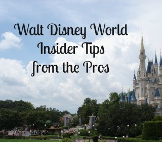 Experts off insider Disney World vacation tips