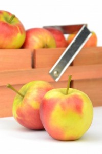 Facts about apples so you can answer all of your kids' questions