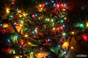 670px-Decorate-a-Window-With-Christmas-Tree-Lights-Step-1