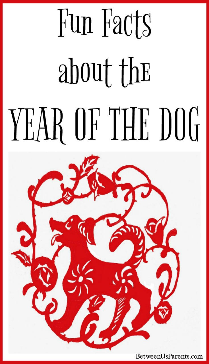 Fun Facts about the Year of the Dog - Between Us Parents