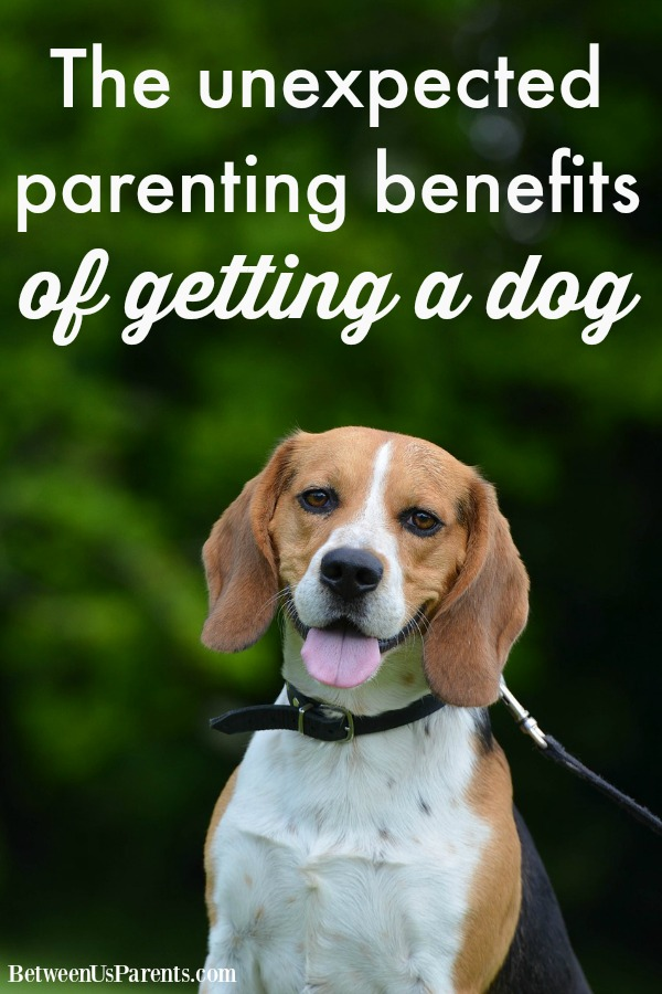 The unexpected parenting benefits of getting a dog