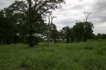 landpics_14