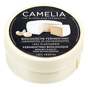 plantaardig-alternatief-voor-camembert