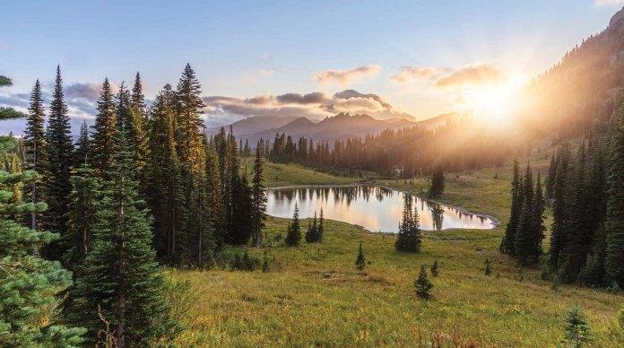 MT.Rainier National Park, WA, USA.
