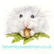 Hamster watercolour painting