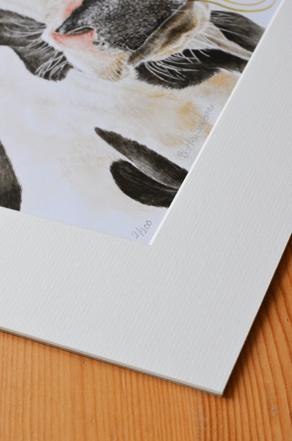 Daisy cow watercolour painting limited edition print