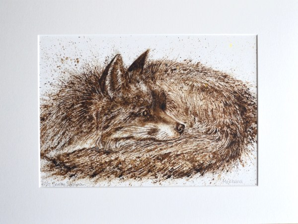 Sleeping fox walnut ink painting limited edition print