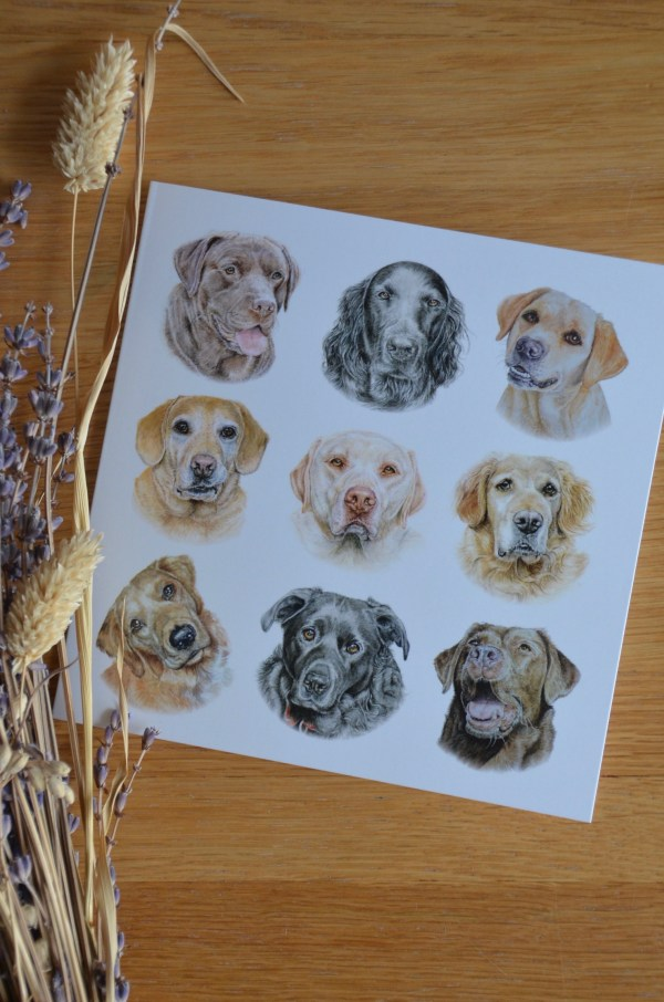Labradors and retrievers dogs greetings card