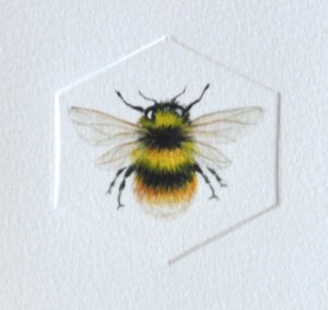 bumble-bee-detail