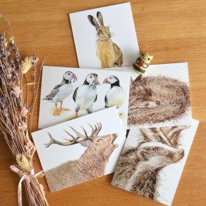 British wildlife greetings card set