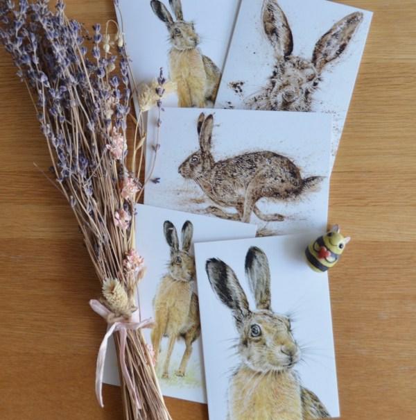 Brown hare greetings card set