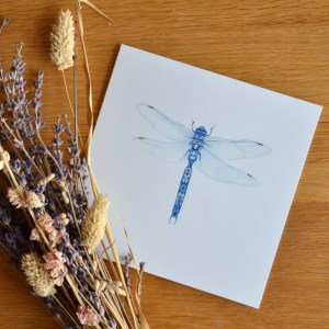 blue-dragonfly-card