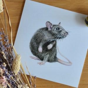 Black rat greetings card