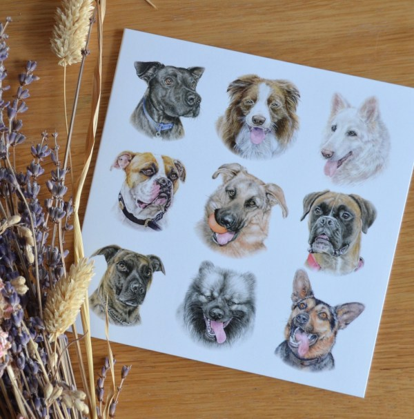 dog-pack-card-large-breeds