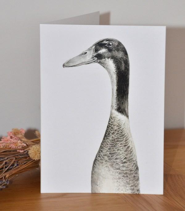 Grey indian runner duck greetings card