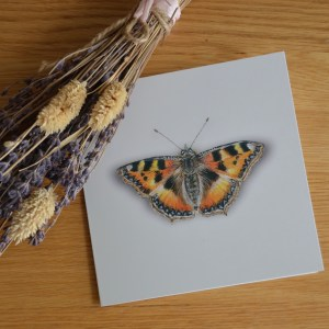 Tortoiseshell butterfly greetings card