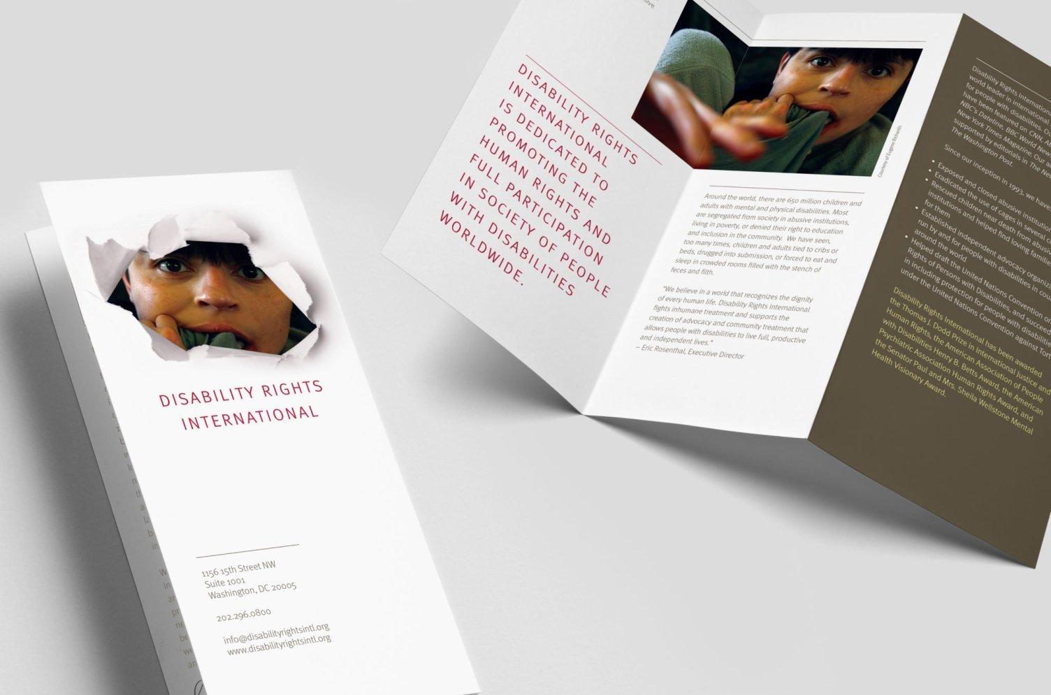 Disability Rights International Brochure
