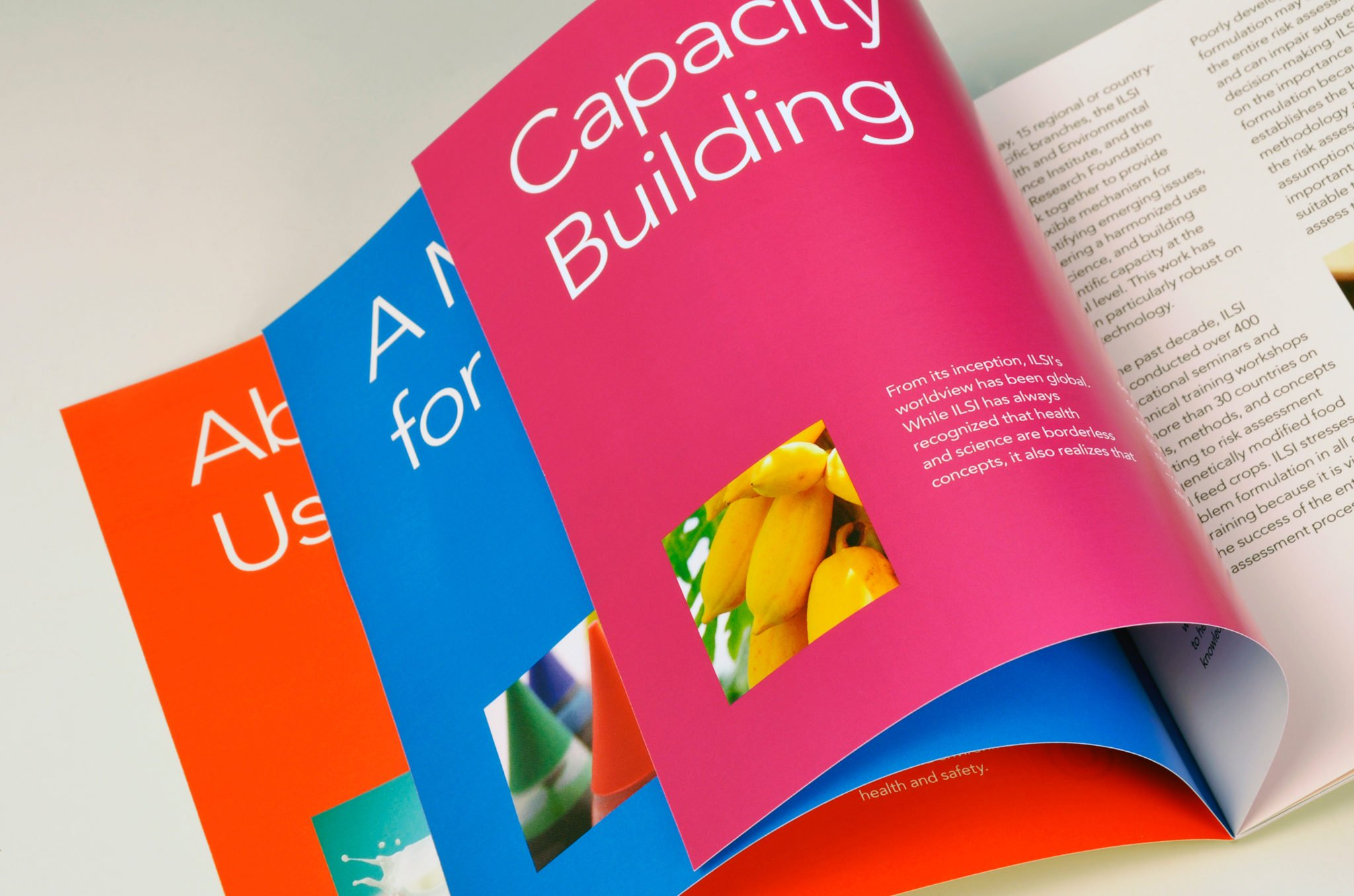 ILSI Brochures