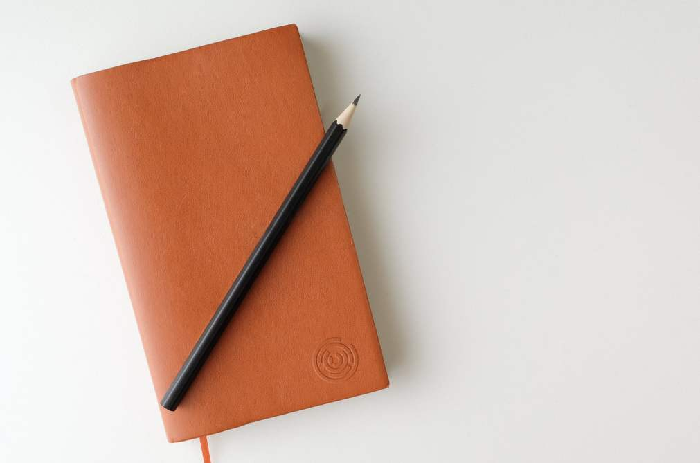 ILSI Leather Book