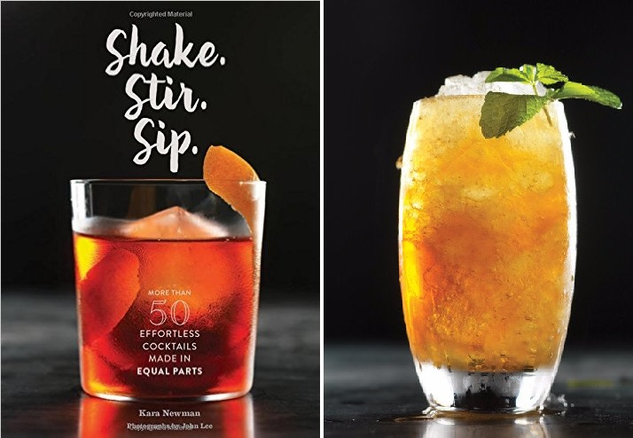 shake stir sip book
