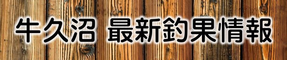 茨城県・牛久沼(たまやボート)