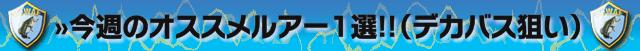 osusume-lures-setagawa