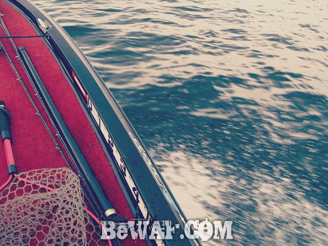 biwako bass fishing guide chouka 10