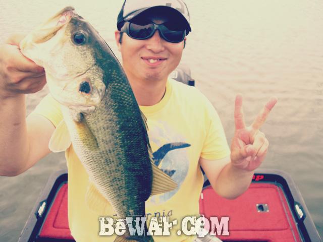 biwako nishinoko ibanaiko bass fishing guide chouka 13