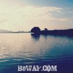 西の湖へ (9月5日)