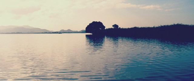 西の湖へ (9月5日) 3