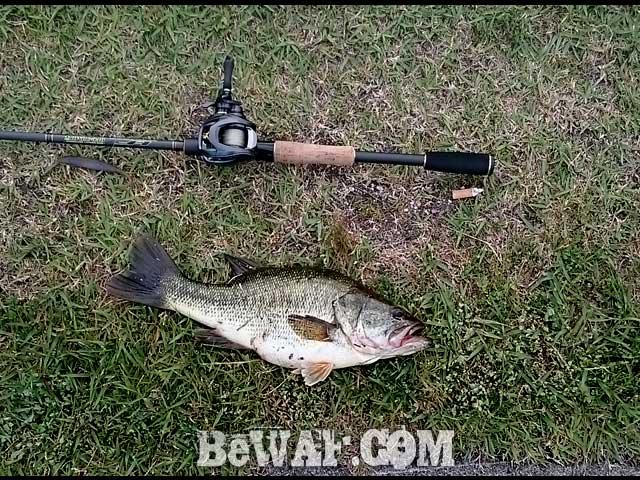 biwako-bass-chouka