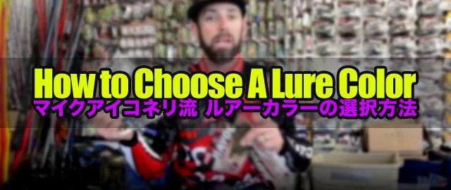 ルアーカラーの選択方法!! (マイクアイコネリ) 1