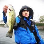 彦根旧港の釣果 (バスフィッシング)
