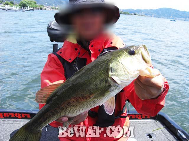 琵琶湖バスフィッシングガイドリポート 2017年 デカバス釣果写真